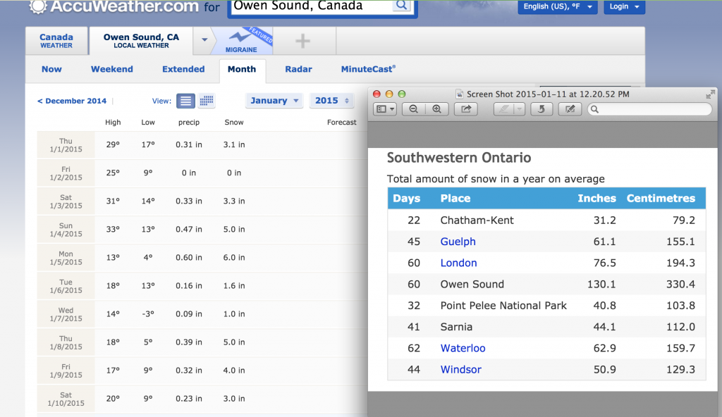 Owen Sound weather screen shot January 2015